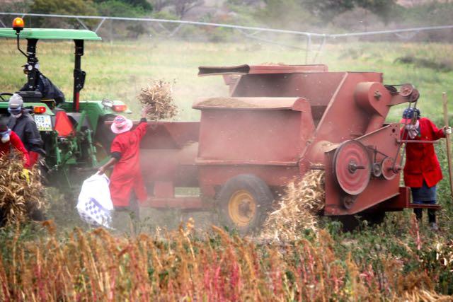 """Latest TLC Venture:""""A Little Bit of Farmer in All of Us"""""""
